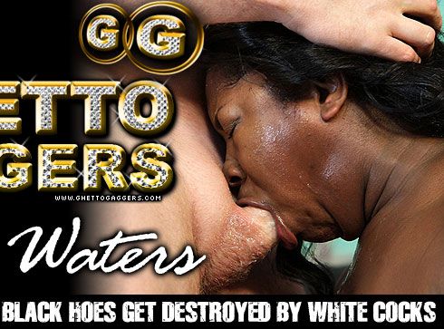 The Ghetto Gaggers Amile Waters Video